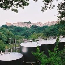 vasche viste dall'alto